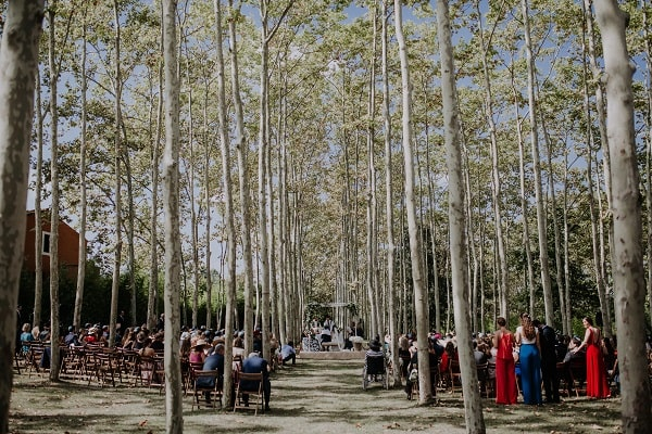 Judeo-Christian wedding in the woods